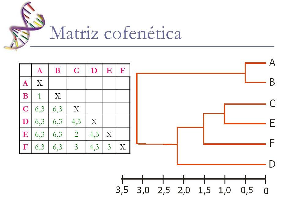 Matriz cofenética A B C D E F X 1 6,3 4,3 2 3