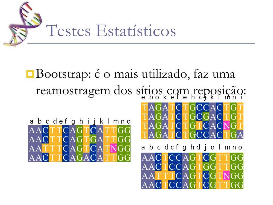 Testes Estatísticos Bootstrap: é o mais utilizado, faz uma reamostragem dos sítios com reposição: G.