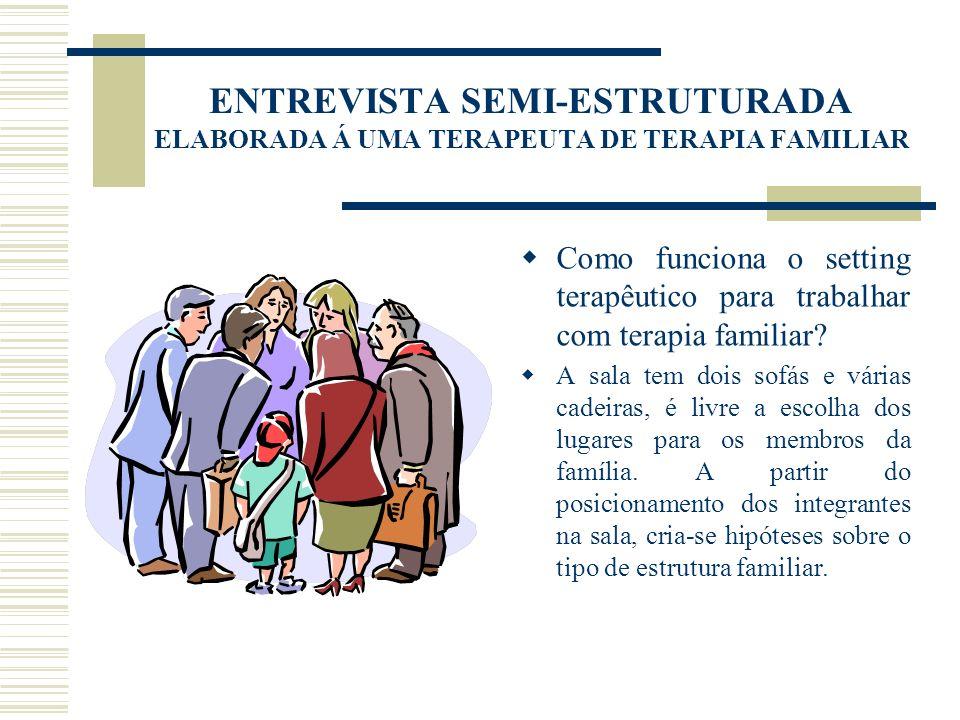 ENTREVISTA SEMI-ESTRUTURADA ELABORADA Á UMA TERAPEUTA DE TERAPIA FAMILIAR