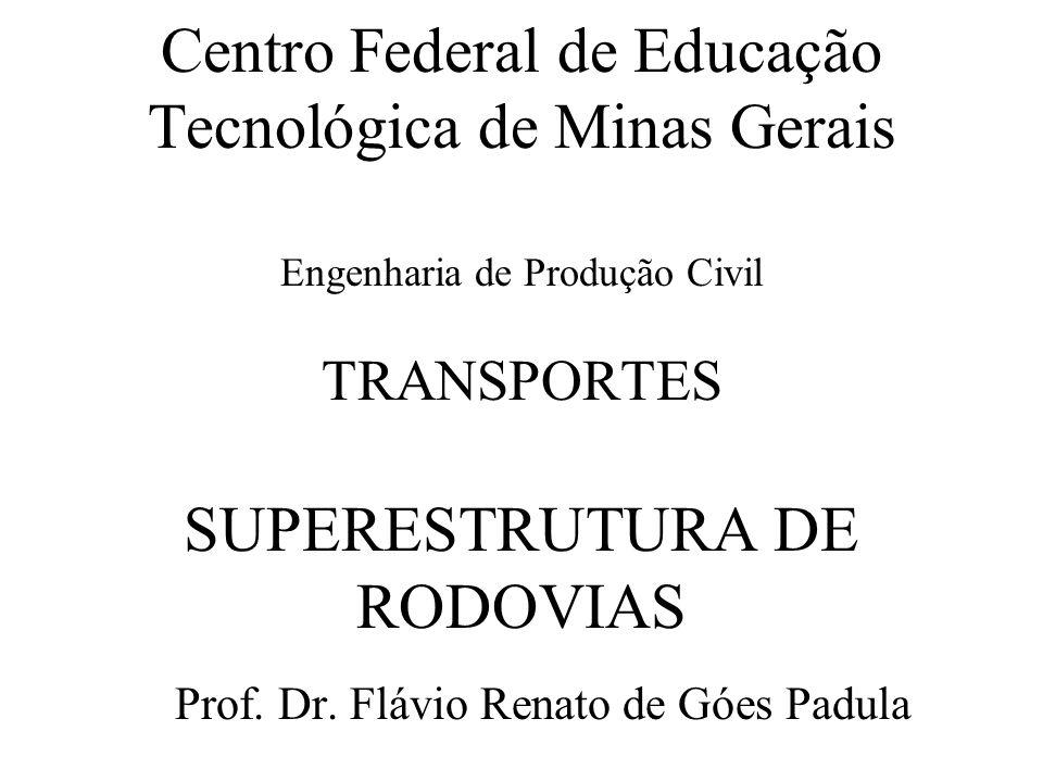 Prof. Dr. Flávio Renato de Góes Padula