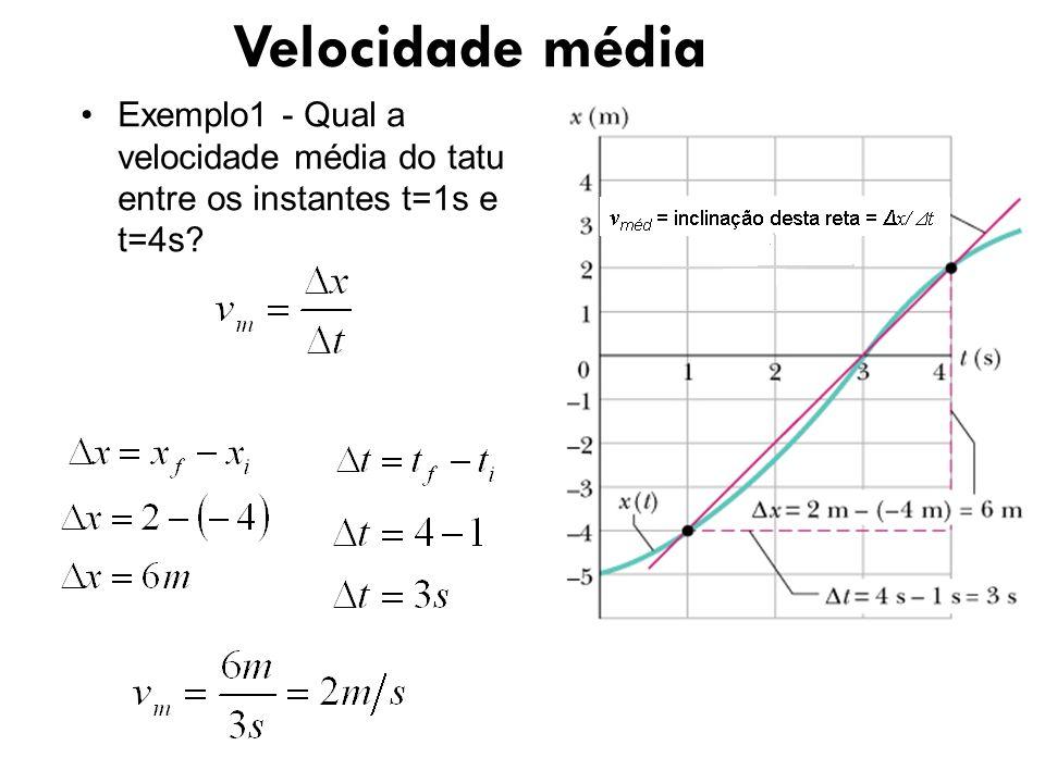 Velocidade média Exemplo1 - Qual a velocidade média do tatu entre os instantes t=1s e t=4s