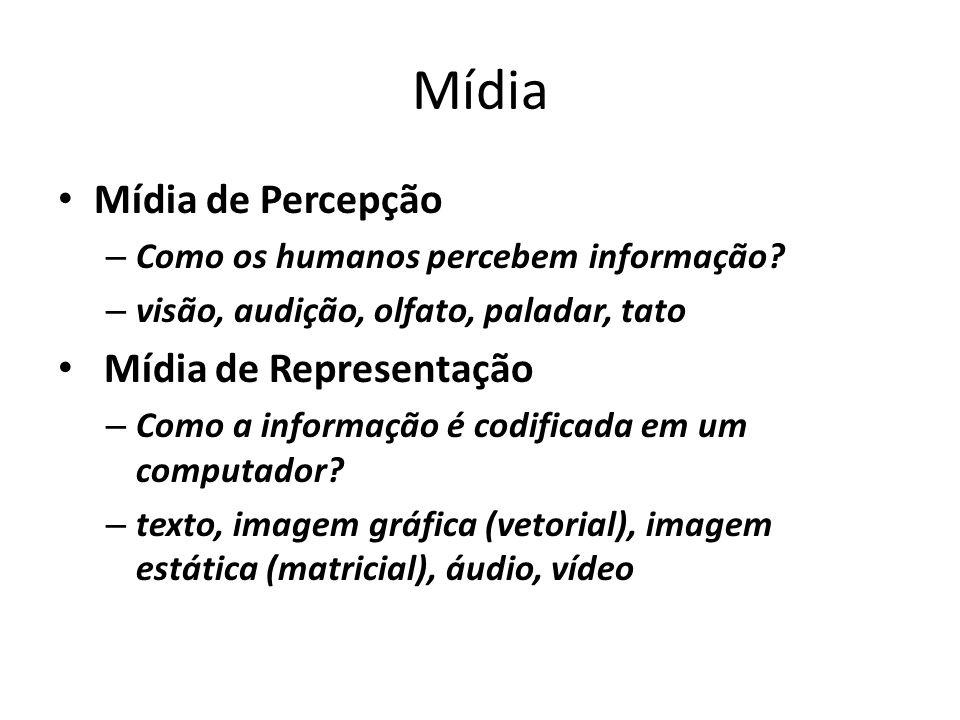 Mídia Mídia de Percepção Mídia de Representação