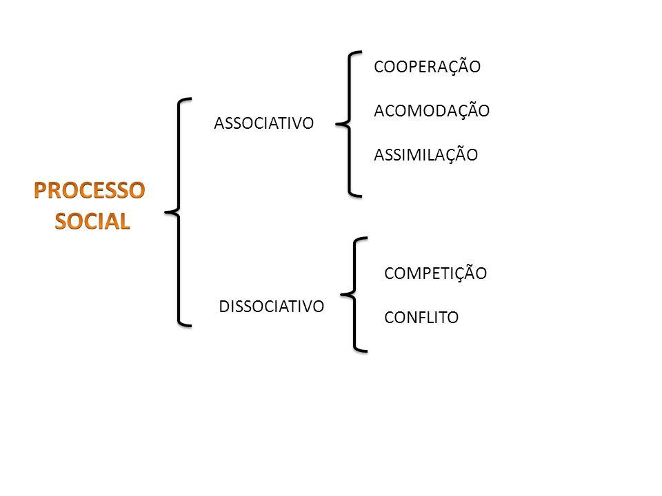 PROCESSO SOCIAL COOPERAÇÃO ACOMODAÇÃO ASSIMILAÇÃO ASSOCIATIVO