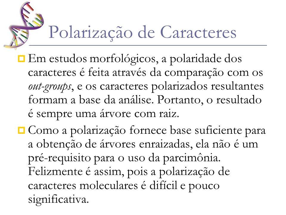 Polarização de Caracteres