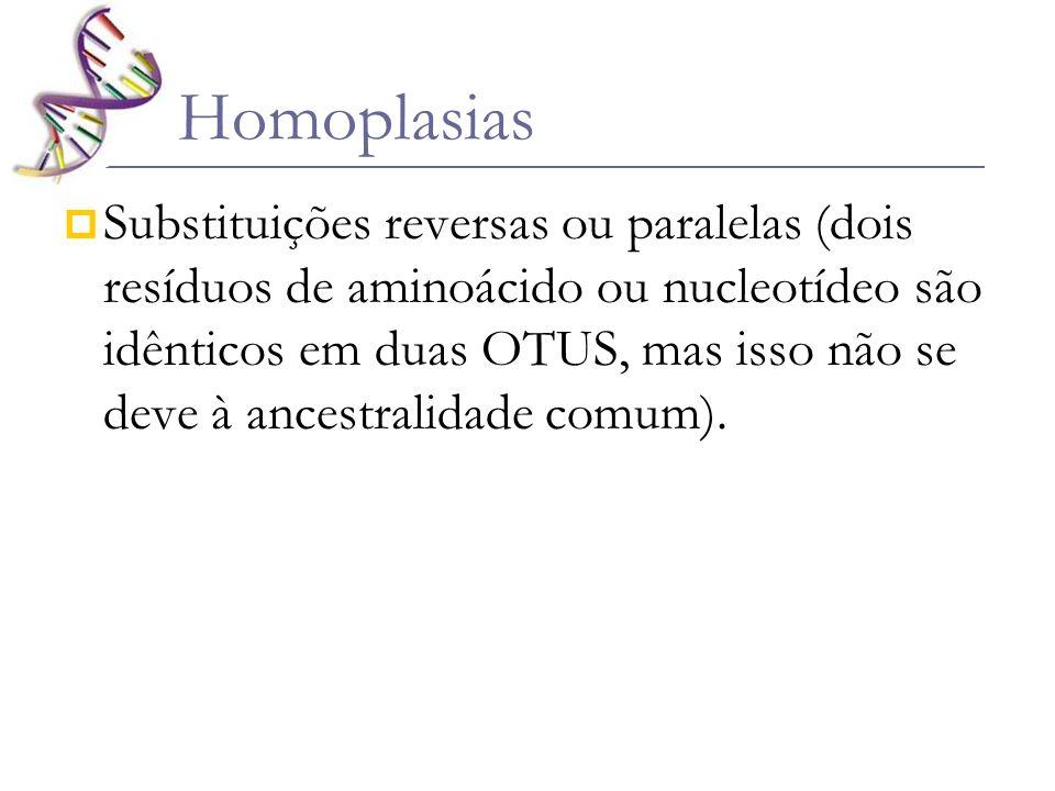 Homoplasias