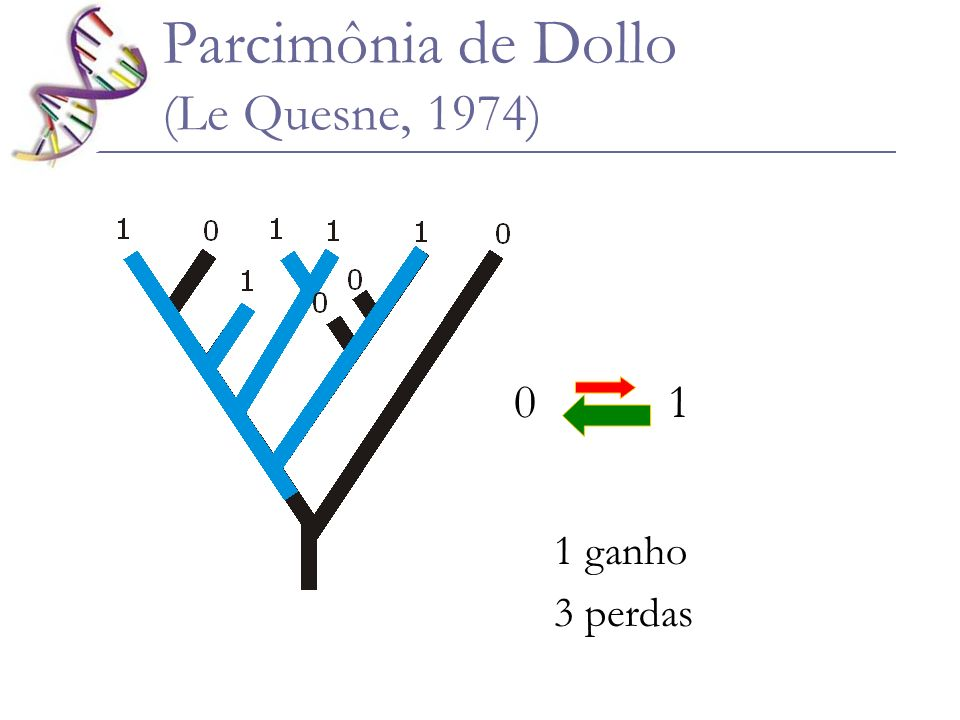 Parcimônia de Dollo (Le Quesne, 1974)