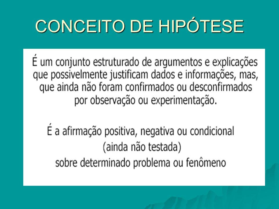 CONCEITO DE HIPÓTESE
