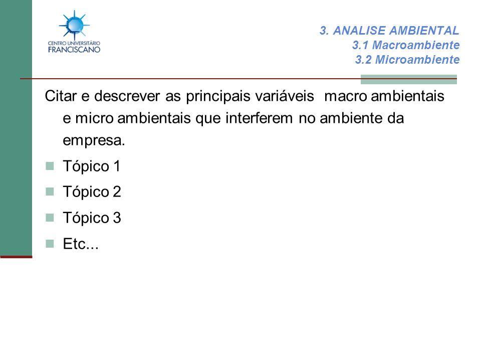 3. ANALISE AMBIENTAL 3.1 Macroambiente 3.2 Microambiente