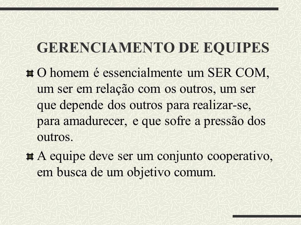 GERENCIAMENTO DE EQUIPES
