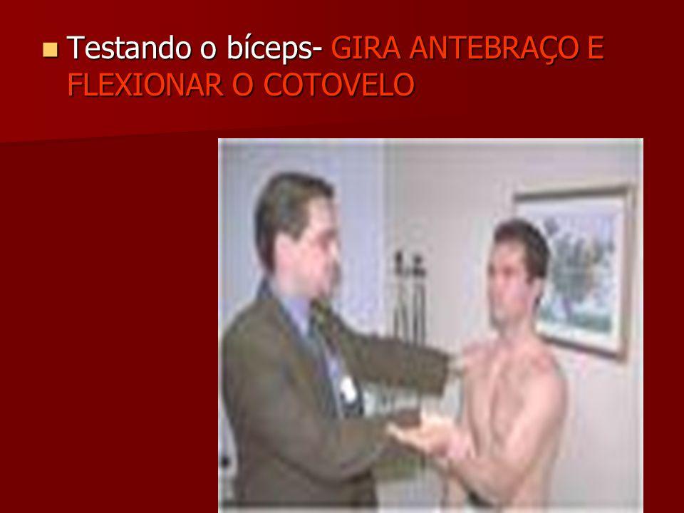 Testando o bíceps- GIRA ANTEBRAÇO E FLEXIONAR O COTOVELO