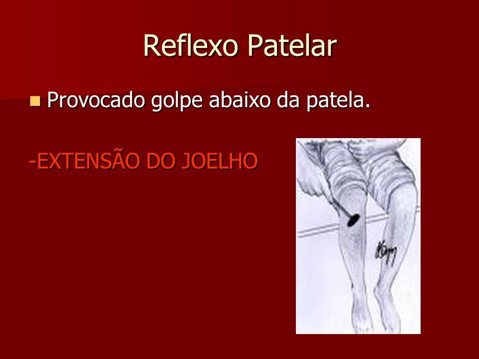 Reflexo Patelar Provocado golpe abaixo da patela. -EXTENSÃO DO JOELHO