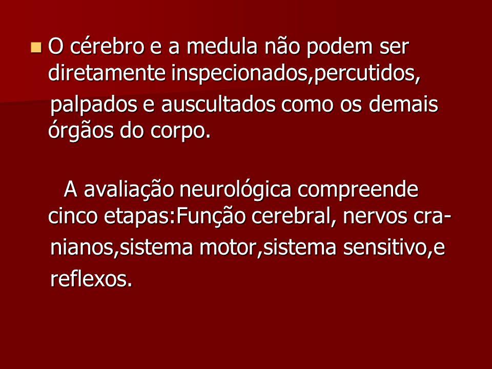 O cérebro e a medula não podem ser diretamente inspecionados,percutidos,