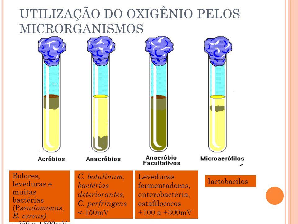 UTILIZAÇÃO DO OXIGÊNIO PELOS MICRORGANISMOS