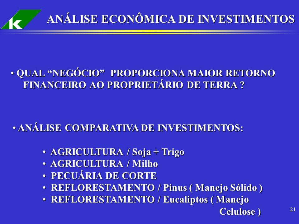 ANÁLISE ECONÔMICA DE INVESTIMENTOS