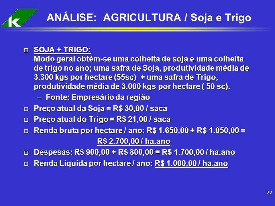 ANÁLISE: AGRICULTURA / Soja e Trigo