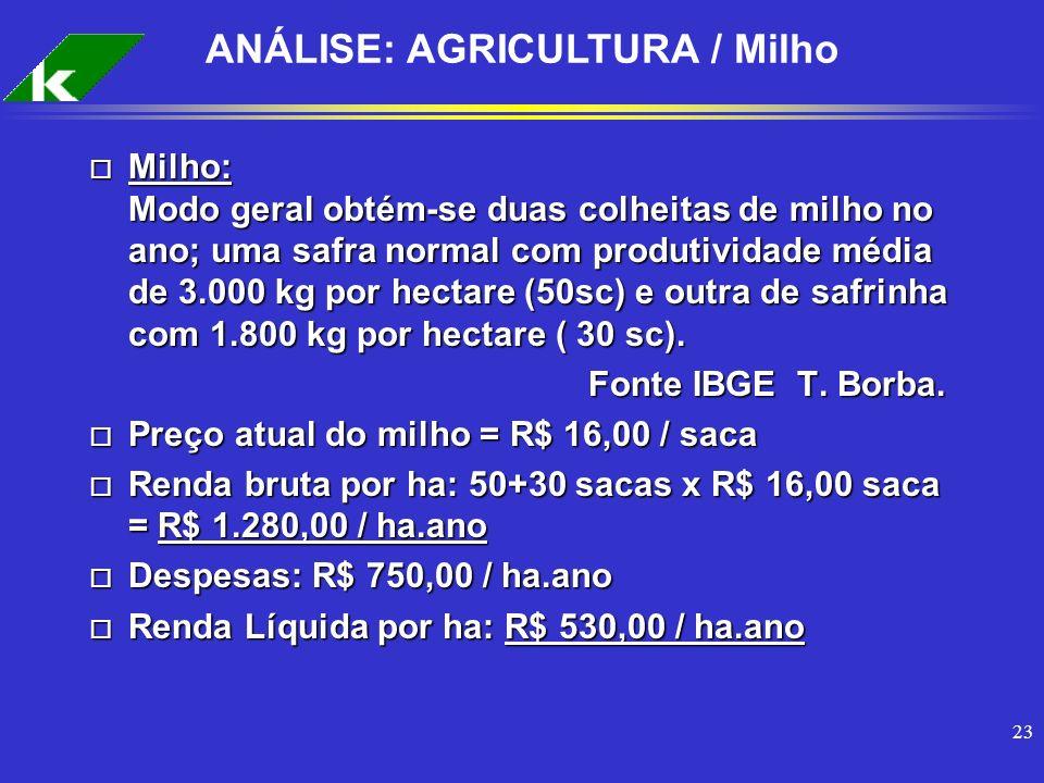 ANÁLISE: AGRICULTURA / Milho