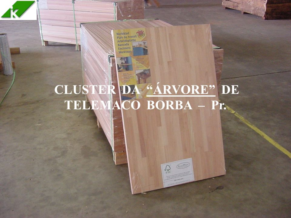 CLUSTER DA ÁRVORE DE TELEMACO BORBA – Pr.