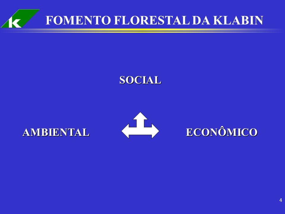 FOMENTO FLORESTAL DA KLABIN