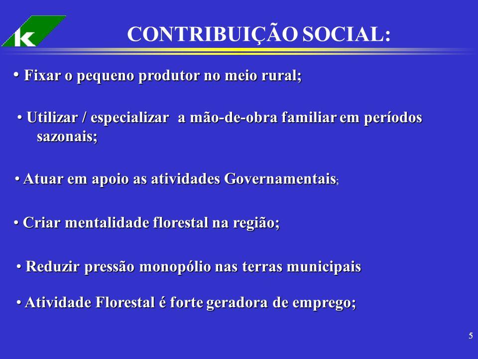 CONTRIBUIÇÃO SOCIAL: Fixar o pequeno produtor no meio rural;