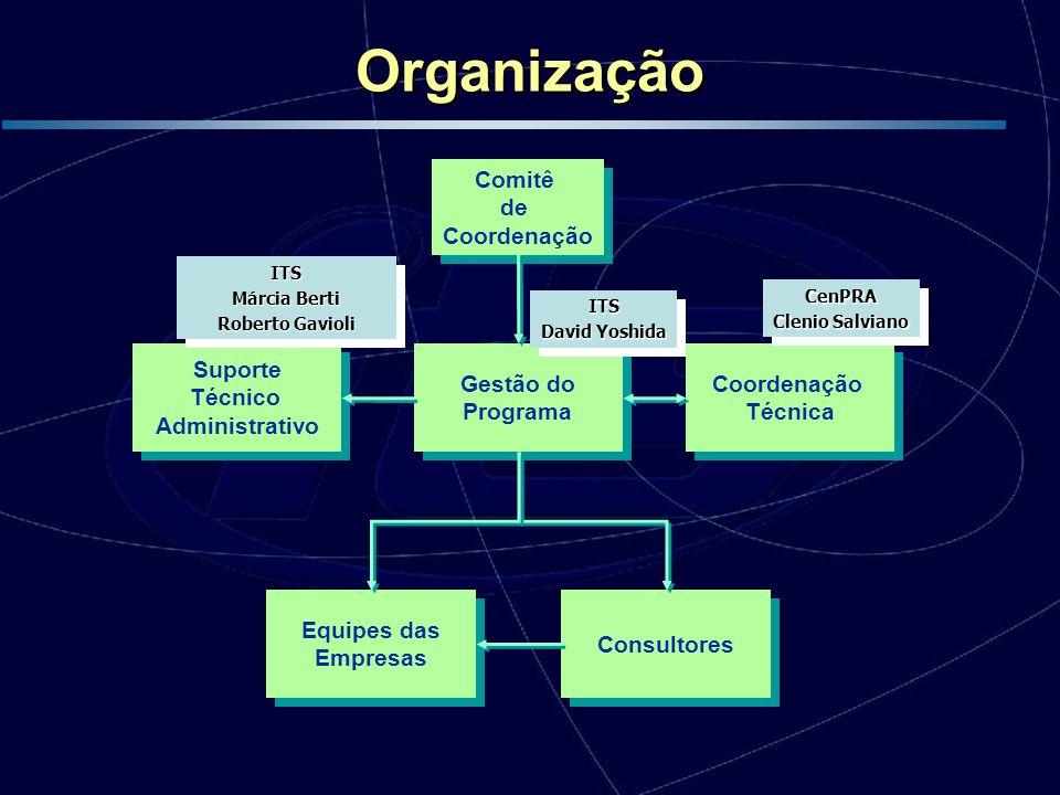 Organização Equipes das Empresas Consultores Suporte Técnico