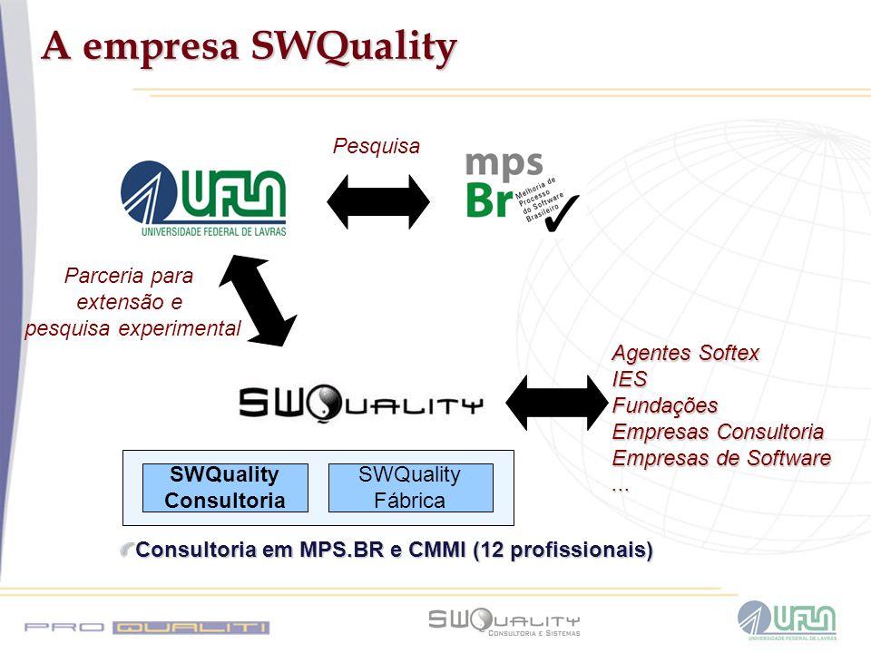 Consultoria em MPS.BR e CMMI (12 profissionais)
