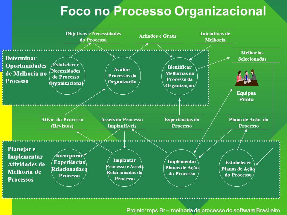 Foco no Processo Organizacional