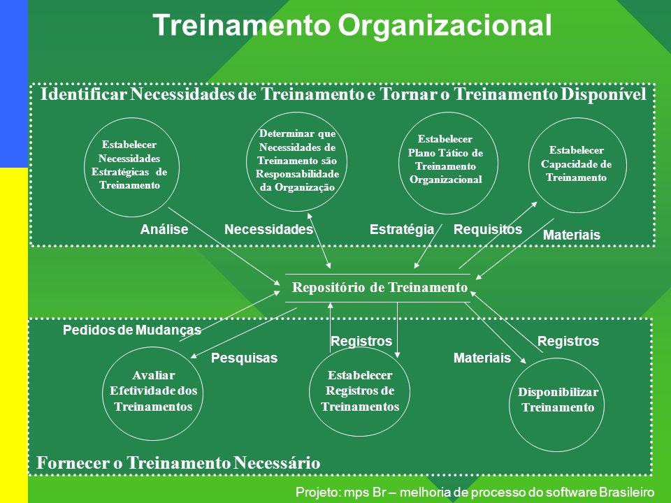 Treinamento Organizacional