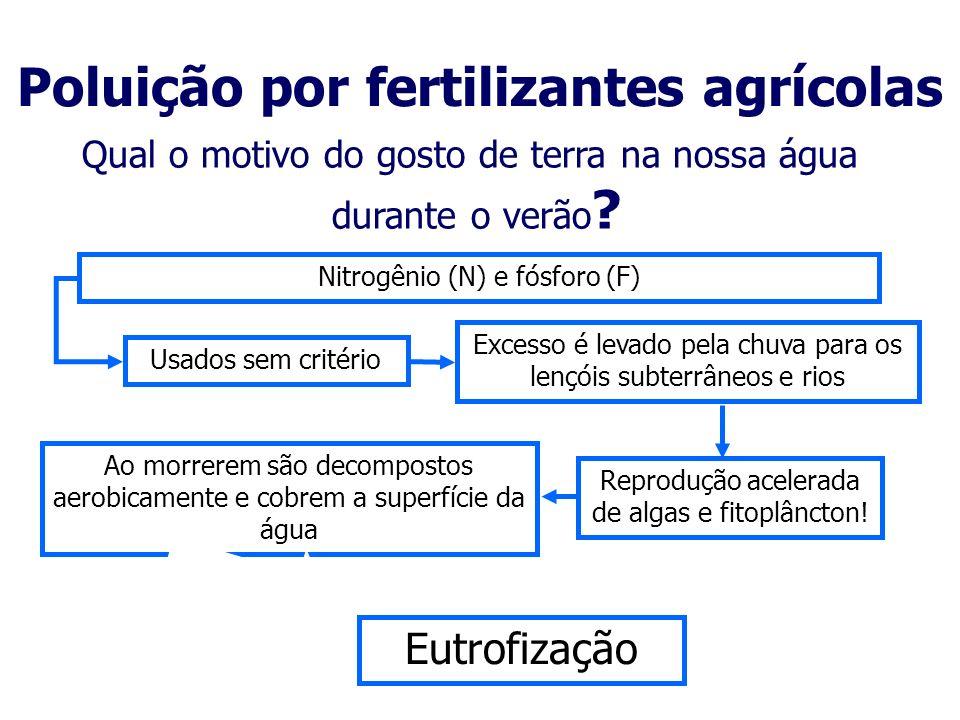 Poluição por fertilizantes agrícolas
