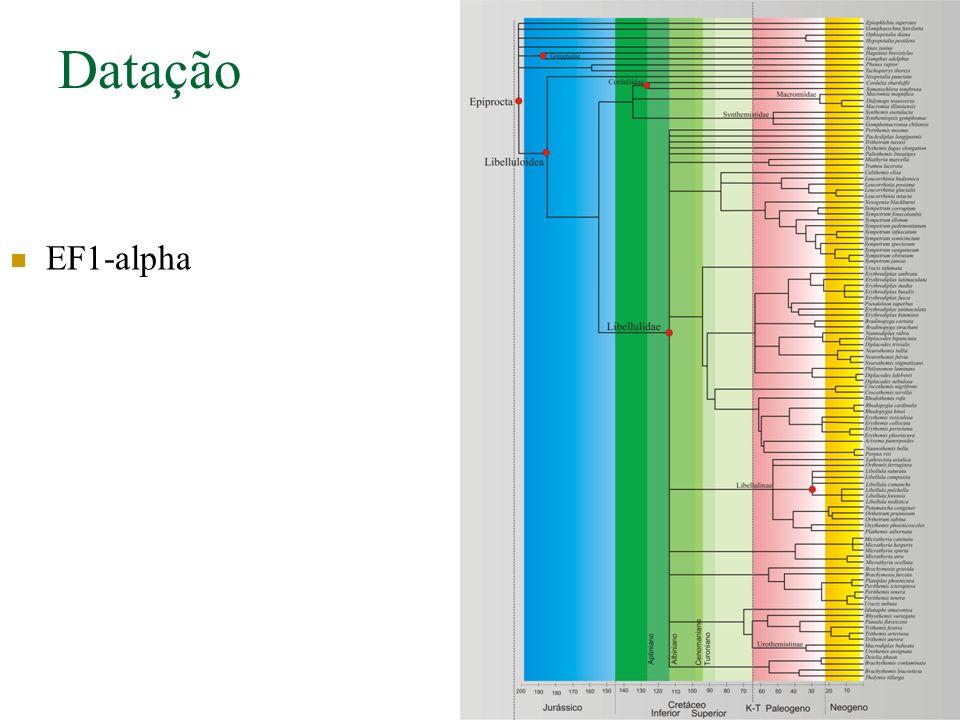 Datação EF1-alpha