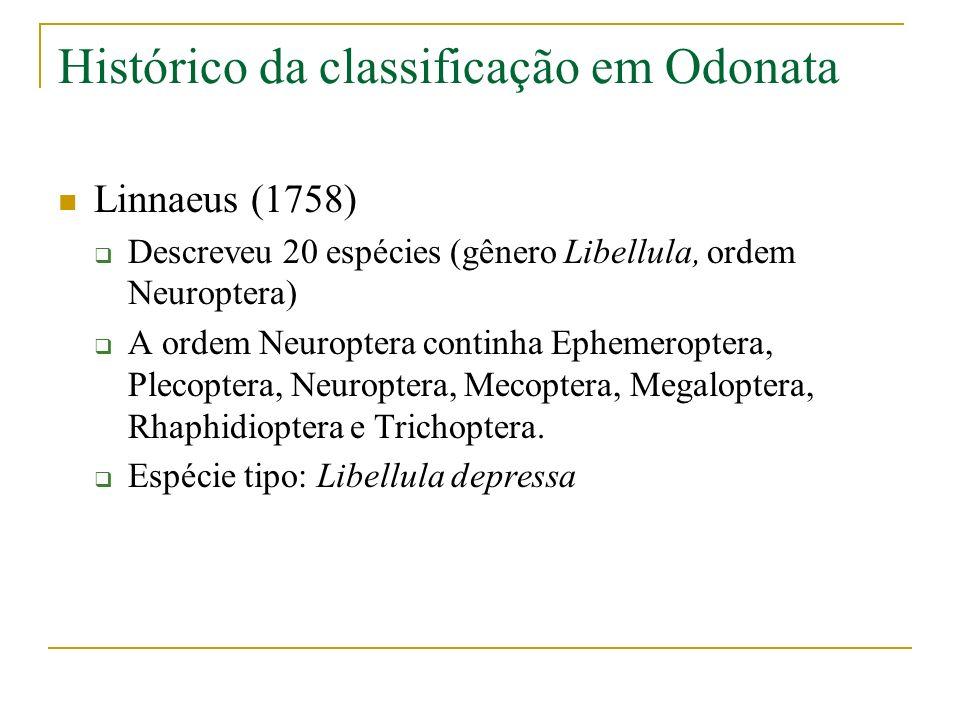 Histórico da classificação em Odonata