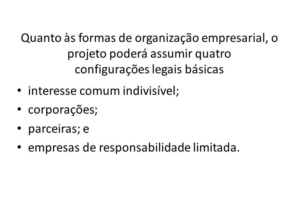 Quanto às formas de organização empresarial, o projeto poderá assumir quatro configurações legais básicas