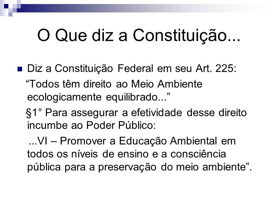 O Que diz a Constituição...