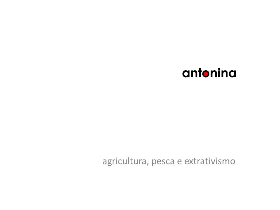 agricultura, pesca e extrativismo