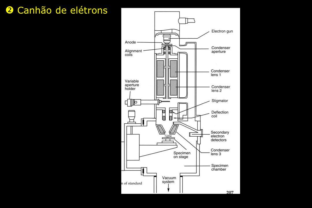  Canhão de elétrons