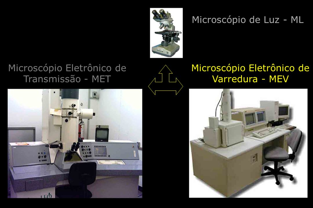 Microscópio Eletrônico de Transmissão - MET