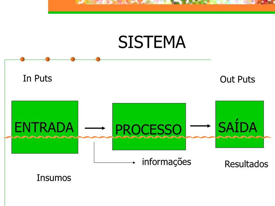 SISTEMA ENTRADA SAÍDA PROCESSO In Puts Out Puts informações Resultados
