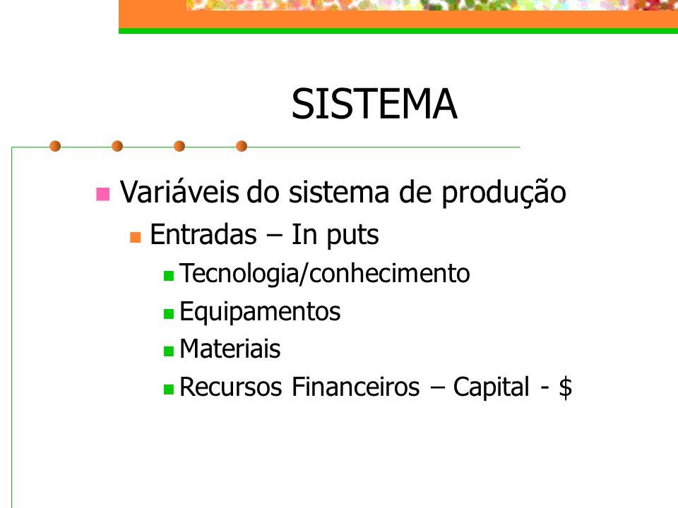 SISTEMA Variáveis do sistema de produção Entradas – In puts