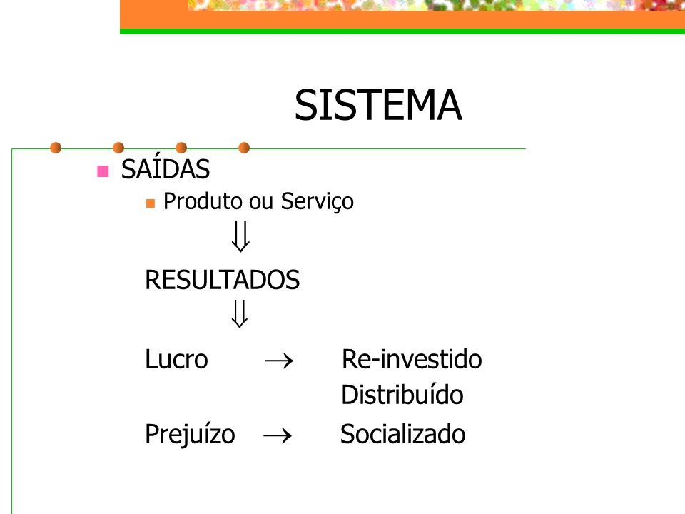 SISTEMA  SAÍDAS RESULTADOS Lucro  Re-investido Distribuído