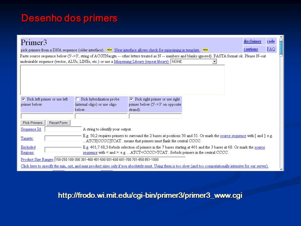 Desenho dos primers http://frodo.wi.mit.edu/cgi-bin/primer3/primer3_www.cgi