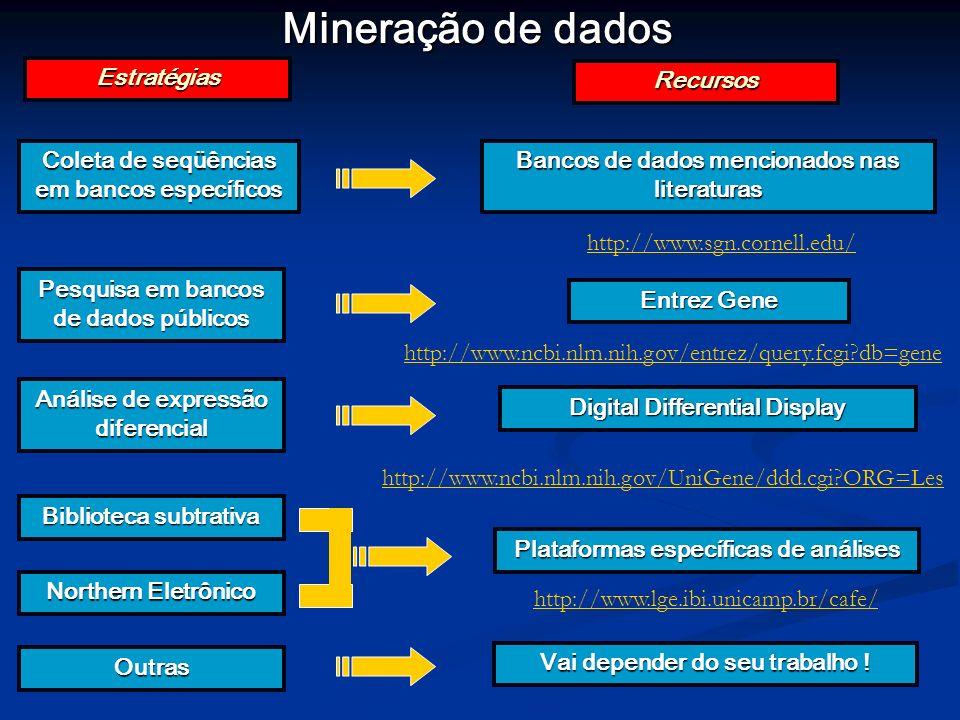Mineração de dados Estratégias Recursos