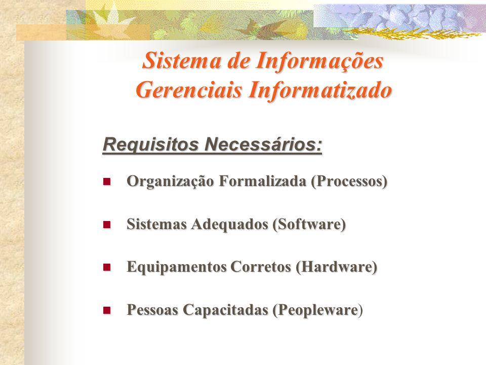 Sistema de Informações Gerenciais Informatizado