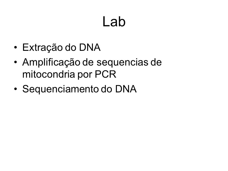 Lab Extração do DNA Amplificação de sequencias de mitocondria por PCR