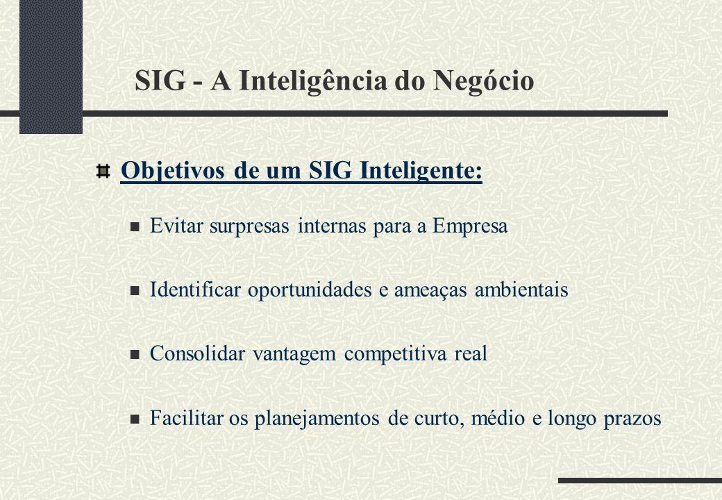 SIG - A Inteligência do Negócio