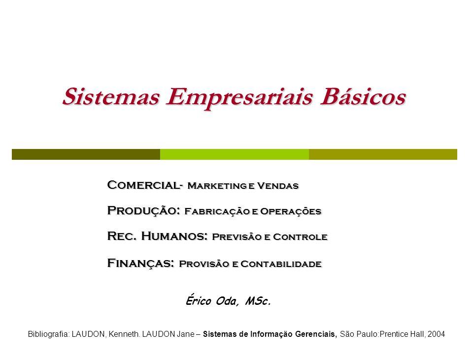 Sistemas Empresariais Básicos