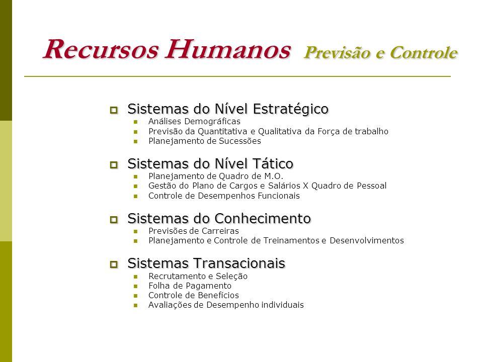 Recursos Humanos Previsão e Controle