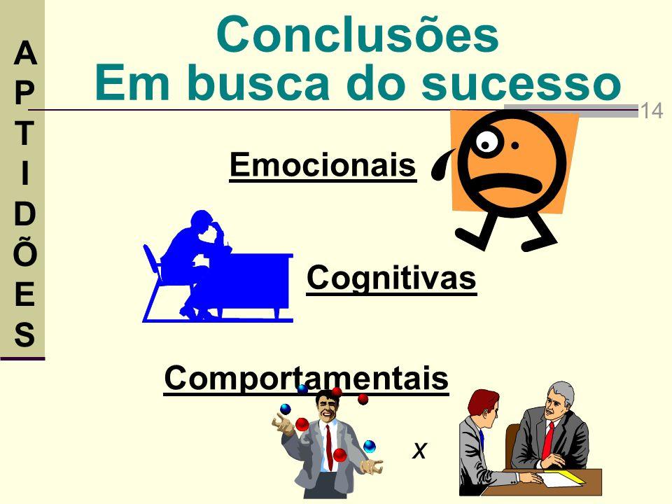 Conclusões Em busca do sucesso