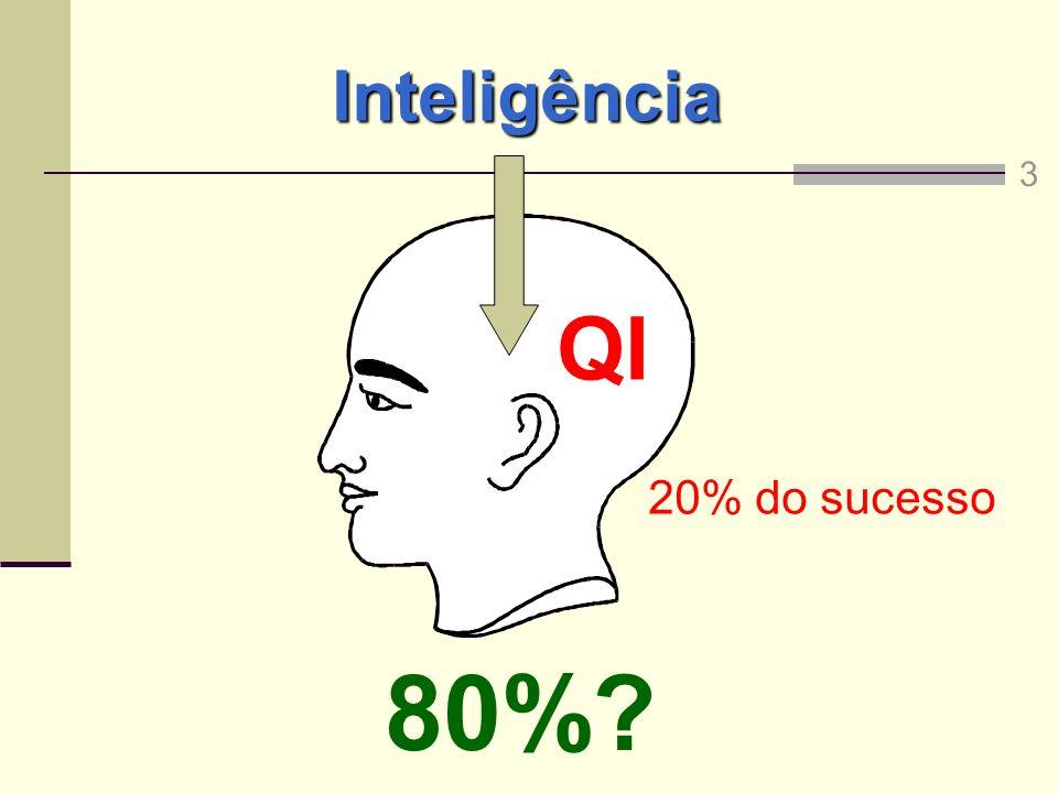 80% QI Inteligência 20% do sucesso 3