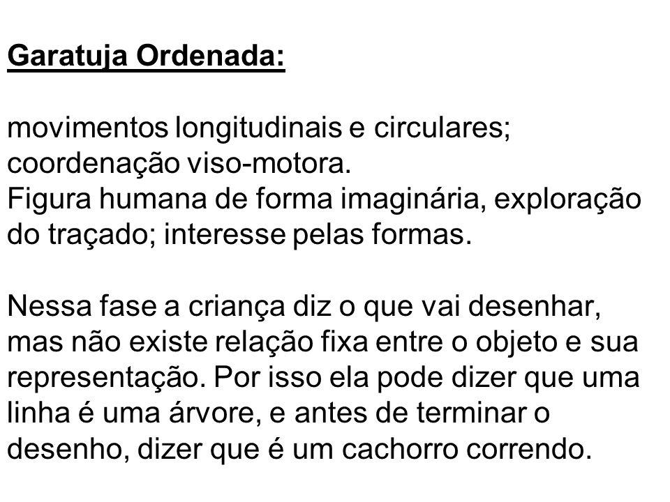 Garatuja Ordenada: movimentos longitudinais e circulares; coordenação viso-motora.