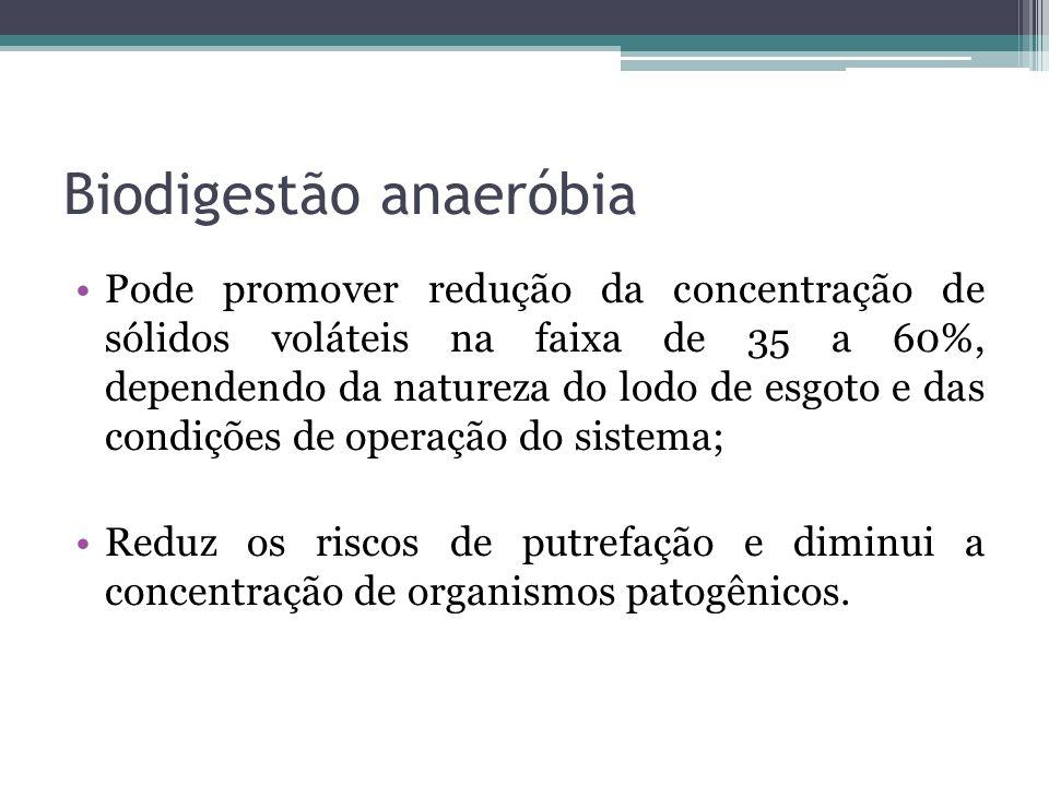 Biodigestão anaeróbia