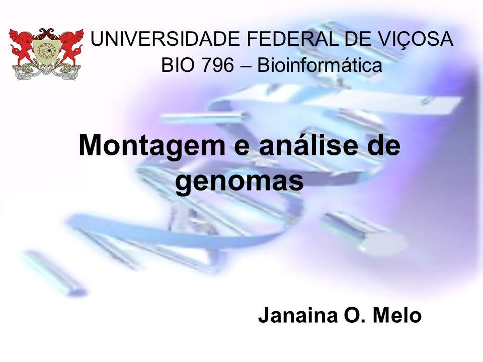 Montagem e análise de genomas